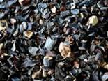 Import Seaweed